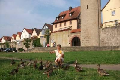 Suche in Dessau und Umgebung Partner zur gemeinsamen Freizeitgestaltung... - Bild1