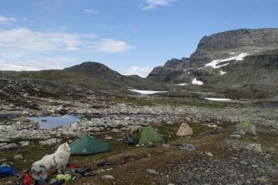 Wandern, Bergsteigen, Trekking (mit Hund) o.Ä. - Bild2