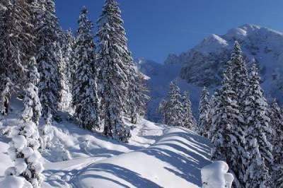 Winterurlaub in Österreich - Gemeinsam statt einsam! - Bild