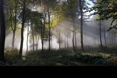 Wander/Trekking-Partner(in) gesucht - Bild2