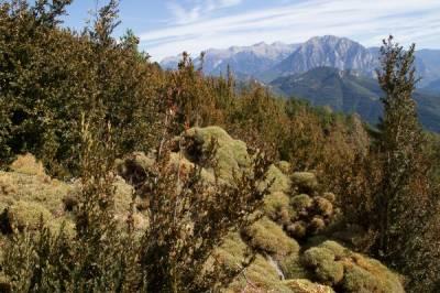 Wander und Genuss in der Pyrenäen - Bild8