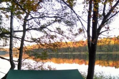 Wald Wasser Entspannung - Bild3